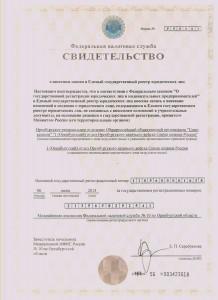 Свидетельство ФНС о 1 отделе ОКВ СкР
